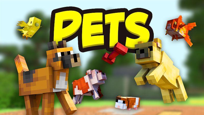 Pets on the Minecraft Marketplace by Team Vaeron