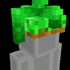 Beanstalk Hat