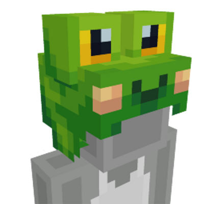 Frog Hat on the Minecraft Marketplace by Hourglass Studios