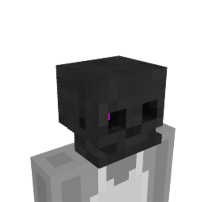 Wither Skeleton Skull on the Minecraft Marketplace by Glowfischdesigns