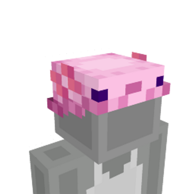 Axolotl Hat on the Minecraft Marketplace by Hourglass Studios