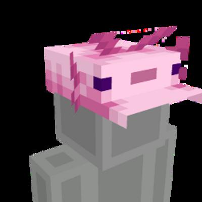 Axolotl Hat on the Minecraft Marketplace by Blu Shutter Bug