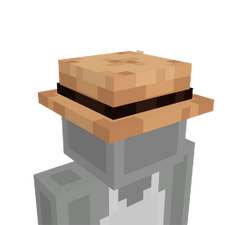 Safari Hat on the Minecraft Marketplace by BLOCKLAB Studios